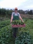 Laura with radish