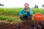 Robyn cutting lettuce